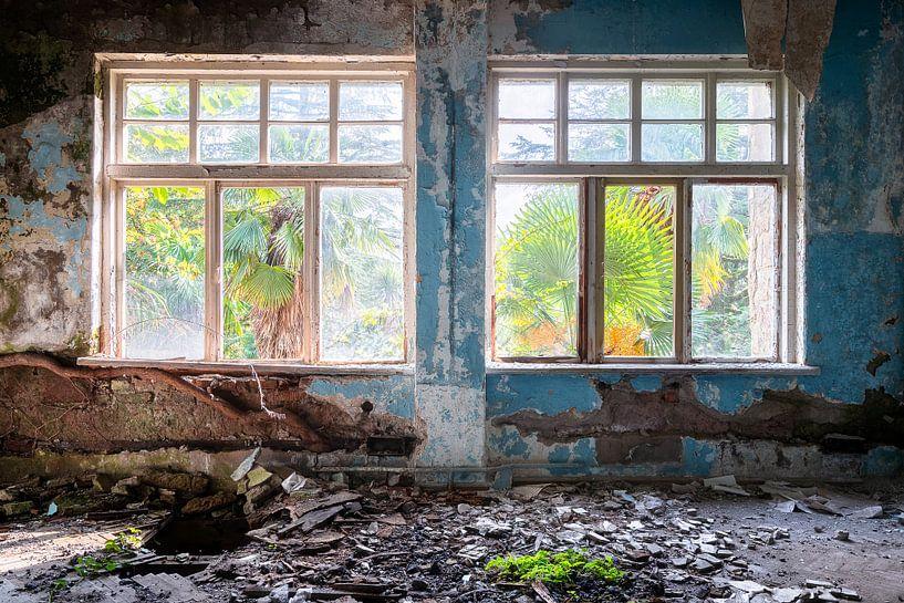 Tropisches Aussicht im Verfall. von Roman Robroek