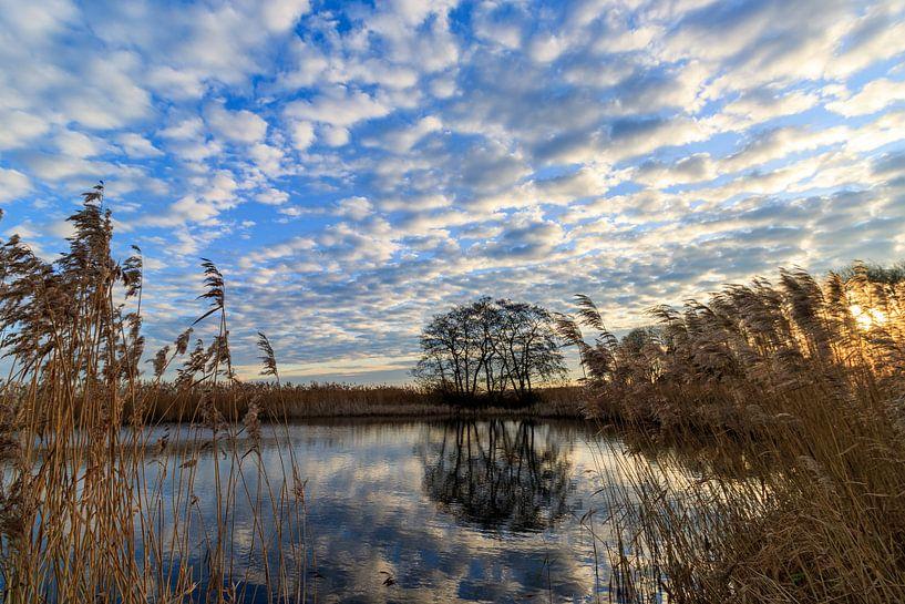 Zonsopkomst weerspiegeling in de Weerribben van Photo Henk van Dijk