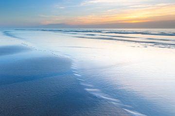 Texel de la plage