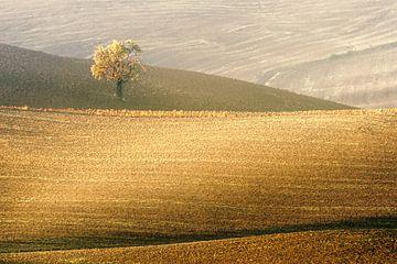 Toscaans Landschap van Peter Poppe