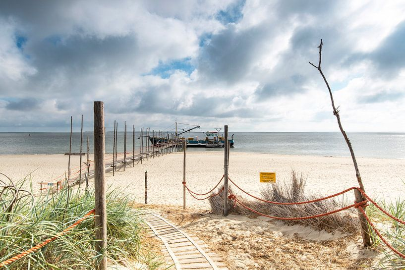Texel-Vlieland van P Kuipers