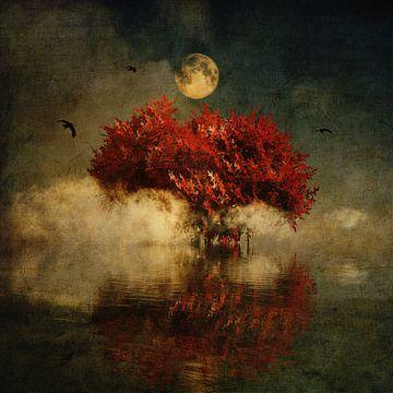 Amerikaanse eik met volle maan van Jan Keteleer