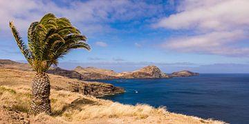 Ponta de Sao Lourenco auf der Insel Madeira von Werner Dieterich