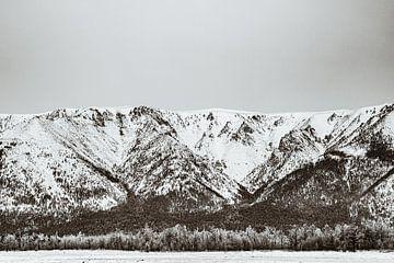 Het woeste woud aan de rand van het Baikalmeer. van Michèle Huge