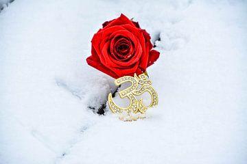 Love for Aum van Rayn Hossainkhan