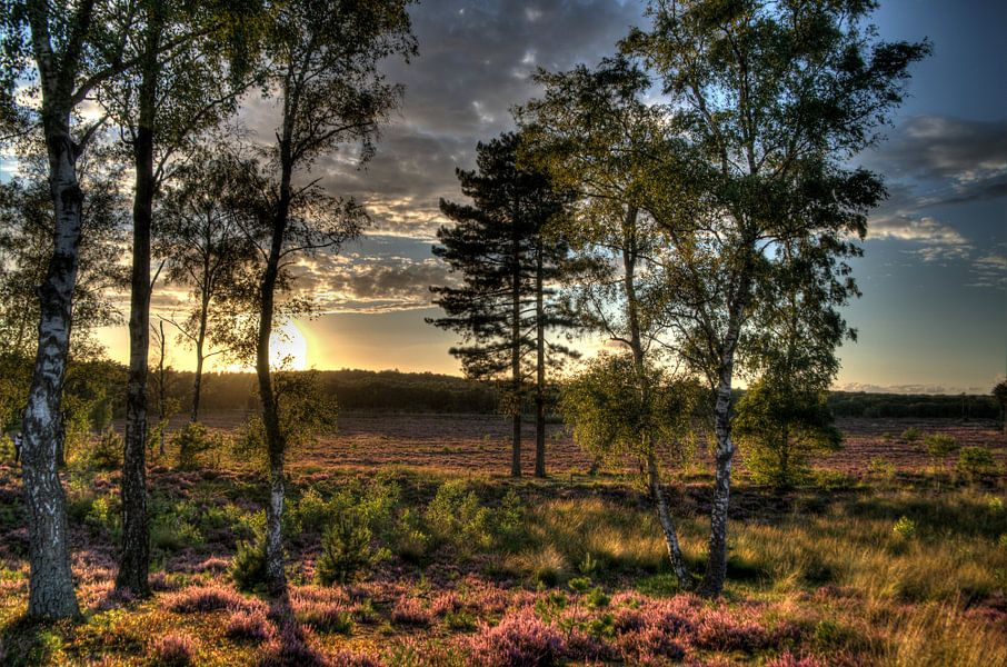 Zonsondergang Landgoed Den Treek II Amersfoort van Watze D. de Haan