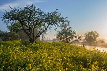 Holländische Wasserlinie in einem Meer von Blumen von Paul Begijn