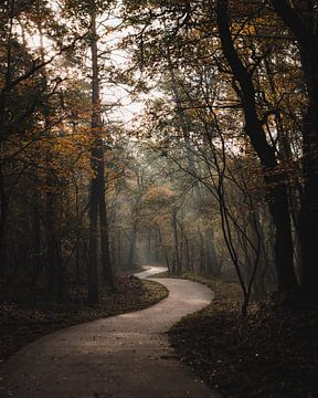Mysteriöser Radweg von Marleen Kuijpers
