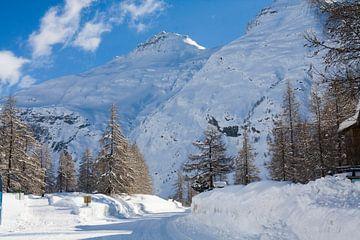 Bonneval-sur-Arc in de Franse Alpen sur Rosanne Langenberg