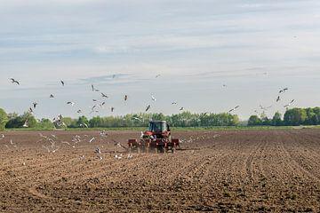 Rode tractor ploegend op het bouwland van Tonko Oosterink