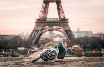 Paris, l'amour sur Origami Art