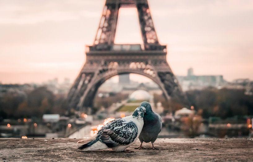 Parijs, liefde van Origami Art