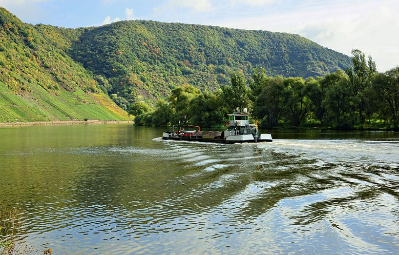 The Moselle in front of the Mont Calmont van Gisela Scheffbuch