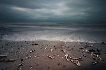 Muscheln in den Wellen am Strand von Arthur Scheltes