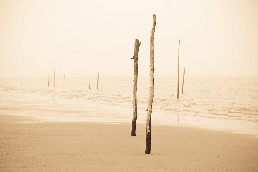 Strandpalen in de mist