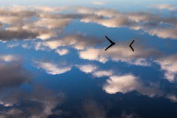 Wolkenlucht weerspiegelt in water Hatertse Vennen van eusphotography