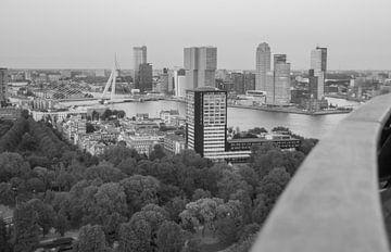 Rotterdam view van Peter Hooijmeijer