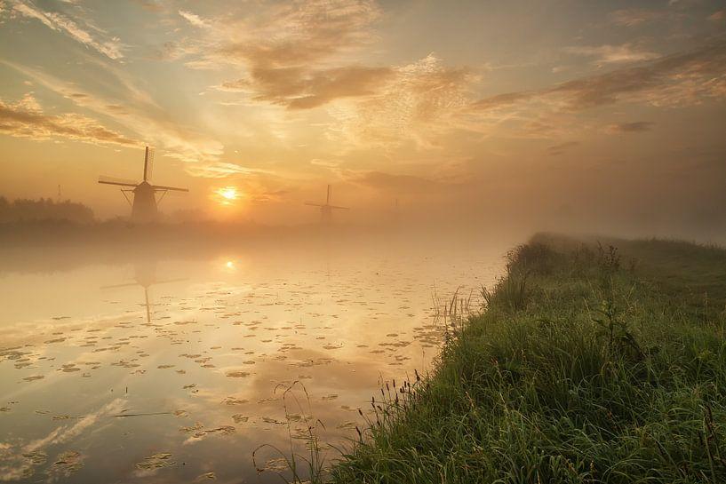 Foggy sunrise in Kinderdijk van Ilya Korzelius