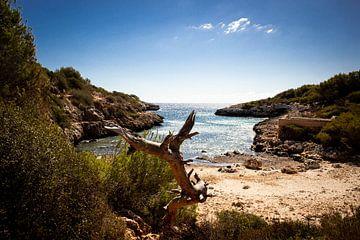 Idyllisch strand van Hilda Koopmans