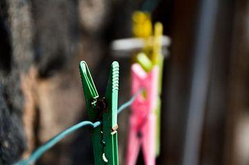 Wäscheklammern Fuerteventura von Marieke van der Hoek-Vijfvinkel