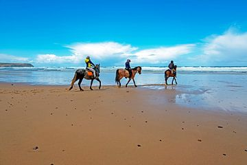 Reiten am Strand in Portugal von Nisangha Masselink