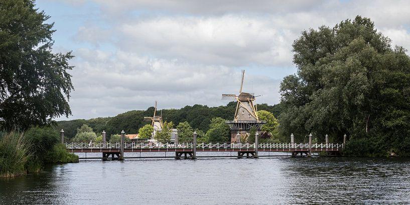 Molens De Lelie en De Ster aan de Kralingse Plas in Rotterdam van MS Fotografie