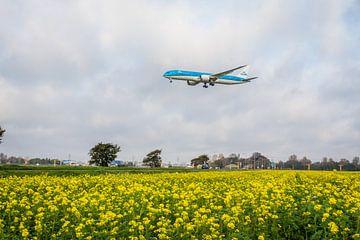 KLM in landing van Jasper Scheffers