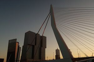 Zonsondergang Kop van Zuid Rotterdam