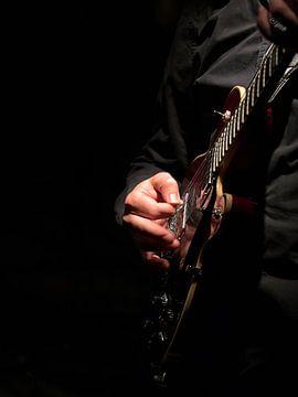 Hermit gitaar  von Michel De Pourcq
