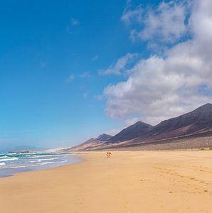 Playa de Cofete, Parque Natural de Jandia, Cofete, Fuerteventura, Canary Islands, Spanje, van