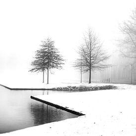 Mist en sneeuw. van Pieter van Roijen