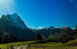 Bergleben von Arthur Mul