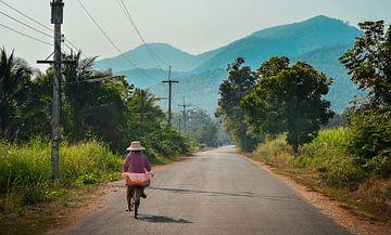 Thailändische Landschaft, Sukhothai rad von Nick Hartemink
