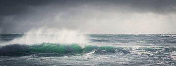 The wave van Marloes van Pareren