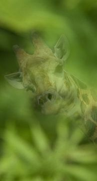 Giraffe dubbelbeeld von Stephan Van Reisen
