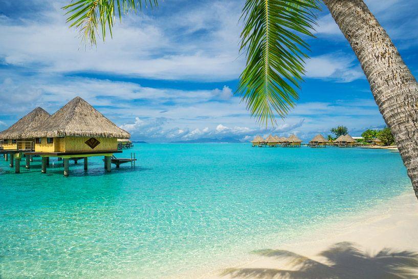 Strand van Bora Bora van Ralf van de Veerdonk