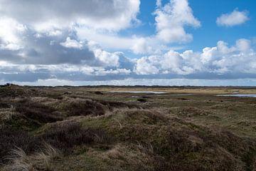 Texels landschap de Slufter van Maurice De Vries