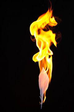 Feuer und Flamme #8 von pixxelmixx