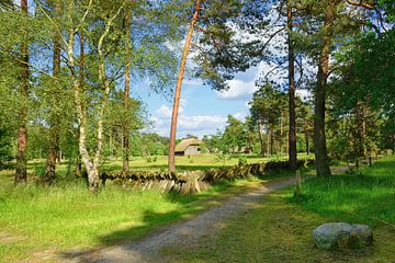 Farmyard of a shepherd van Gisela Scheffbuch