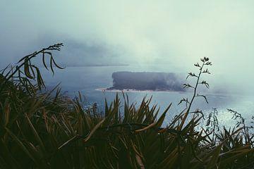 Mistige bergen Maunt Maunganui van yasmin meraki