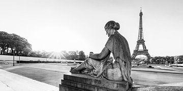 Jardins du Trocadéro et Tour Eiffel à Paris / noir et blanc sur Werner Dieterich