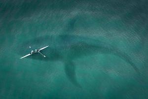 Kano boven Walvis in de zee van