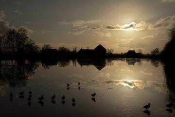 Enten auf dem Eis  in Broek in Waterland von Manuuu S