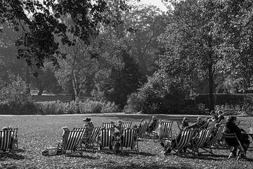 Der Herbst im Park von Daan Pleijsier