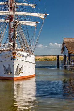 Windjammer im Boddenhafen von Zingst von Christian Müringer