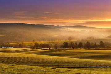 Goldene Landschaft Limburg von Stan Bessems