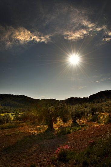 Spaans landschap
