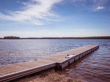 Bootssteg an einem See an der Mecklenburgische Seenplatte von Animaflora PicsStock
