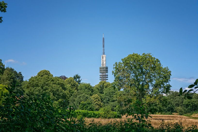 Hilversum, heksenweitje en televisie toren van Pascal Raymond Dorland