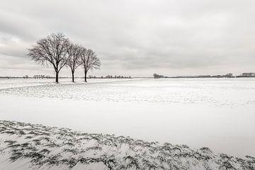 Nederlands landschap op een ijskoude winterdag van Ruud Morijn